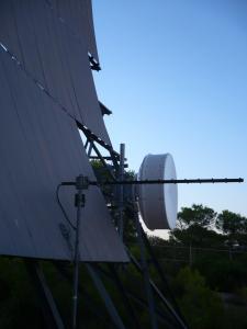 antenas mortiferas