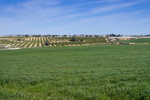 Gifting Castilla la Mancha by farmers invitation